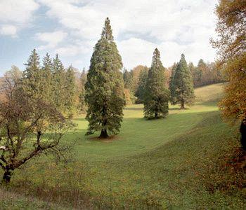 Parco Rimske Terme